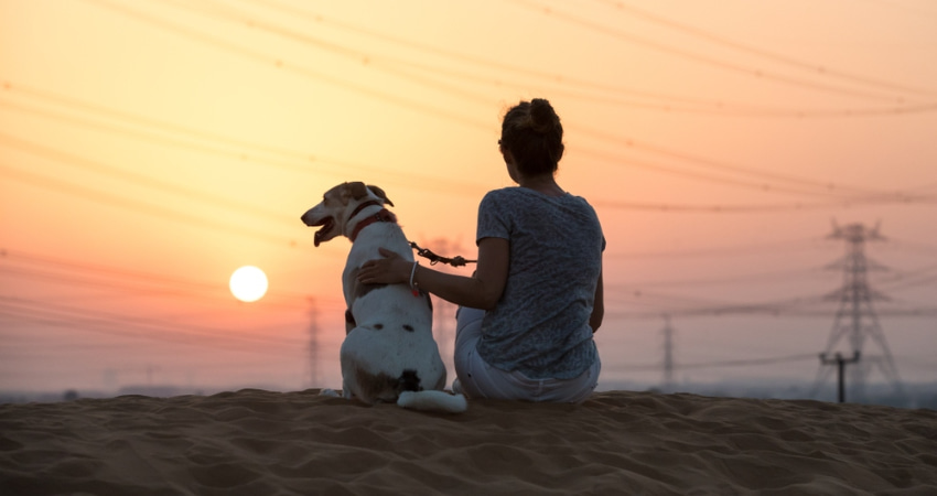 a woman and her dog watch the sunset on a sandy hill