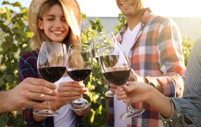 A close up of friends toasting red wine outside near a vineyard