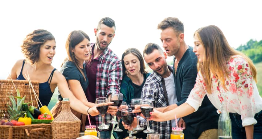 A group of friends toasting wine at a picnic table