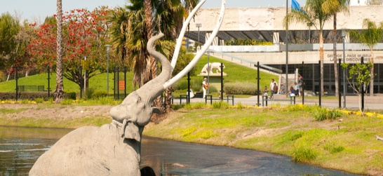 entrance to the la brea tar pits and museum